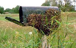 Swarm-Mailbox