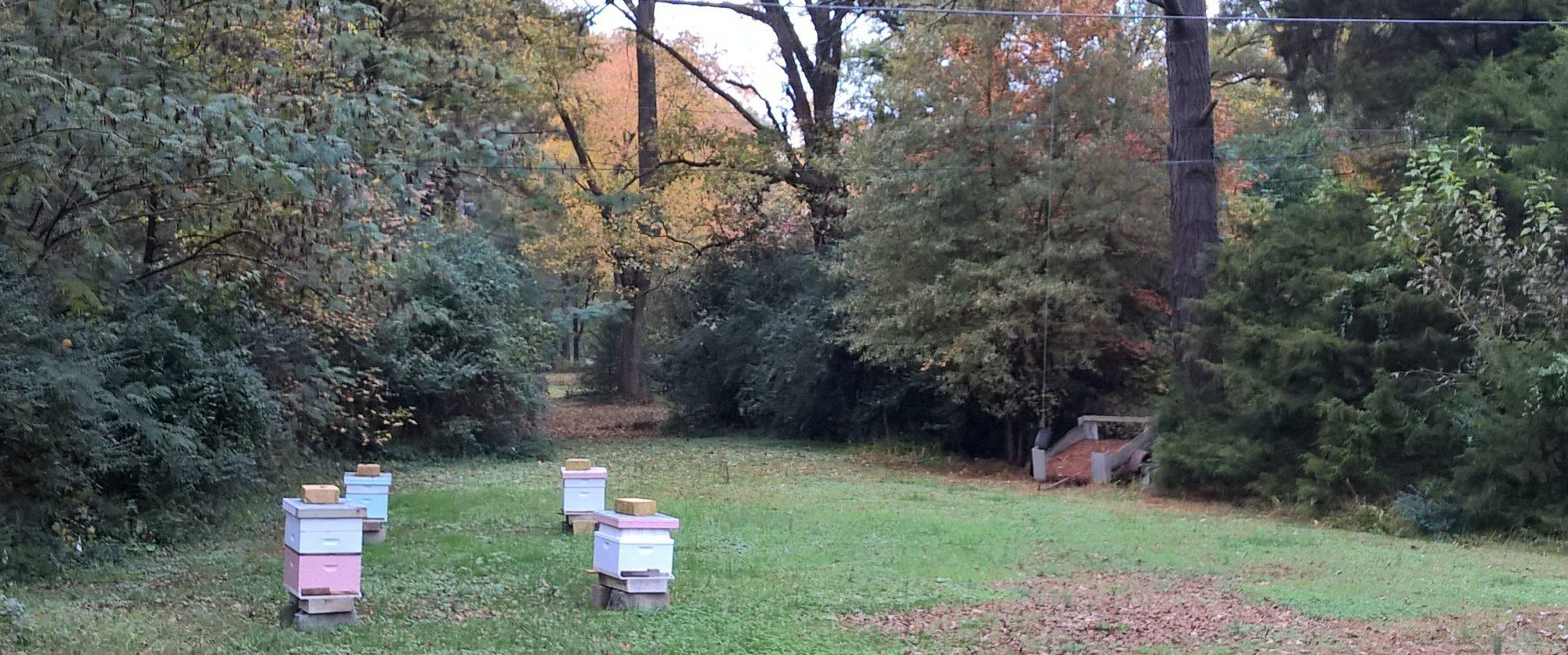 Ashland Beekeepers Association